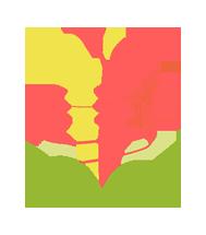 Logotipo de pie de página